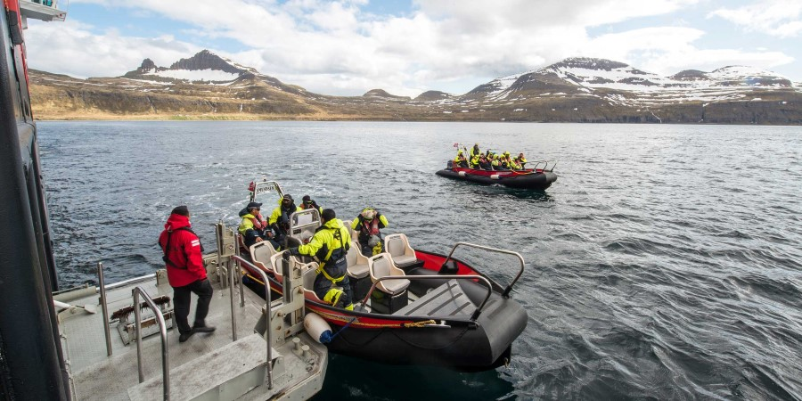 Tenderboat-trip-to-the-Hornbjerg-cliff-Iceland-HGR-113831-Esther-Kokmeijer.jpg
